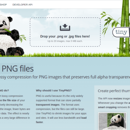 TinyPNG – Compress PNG images while Review